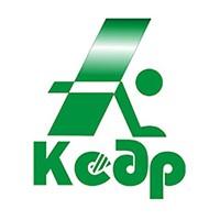 логотип Кедр